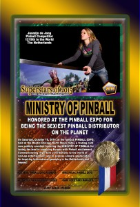 PINBALL-EXPO-2014-AWARDS-MINISTRY-OF-PINBALL-RIBBON